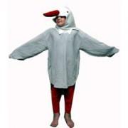 seagull-1349040445-jpg