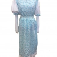 blue-and-white-victorian-skirt-and-top-jpg