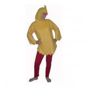 canary-1349040152-jpg