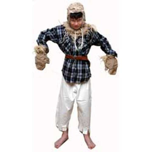 Scarecrow Childrens Costume for Hire